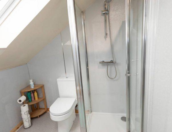 shower upstairs 1